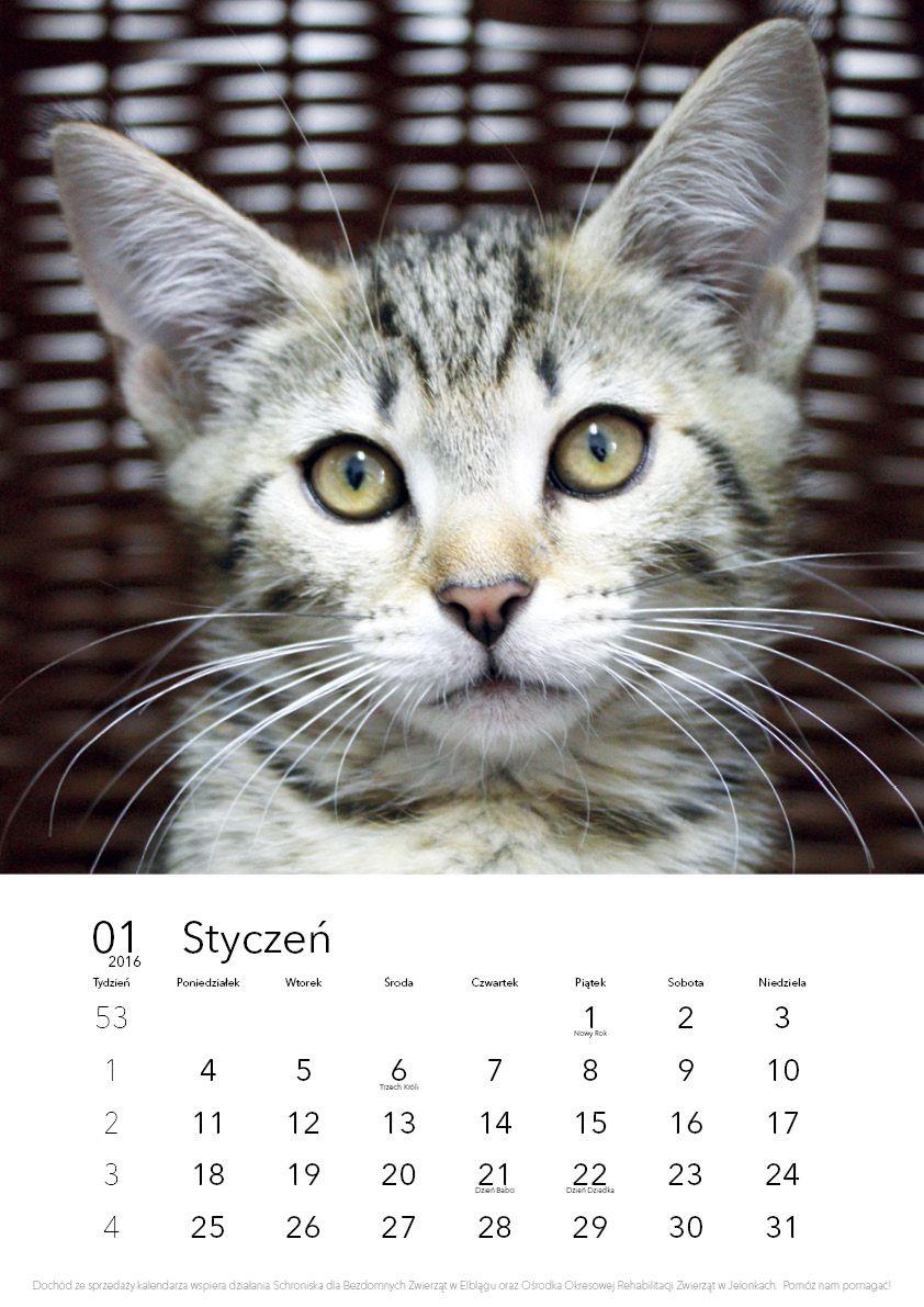 KalendarzFundacjaCMYKFinal2